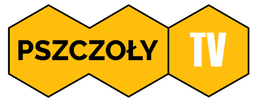 pszczoły na żywo - online 24h